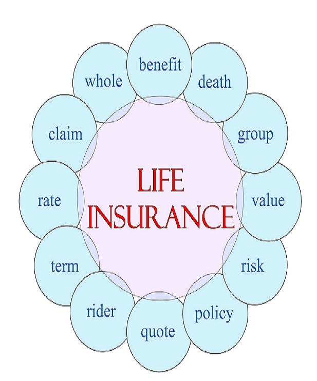 life insurance cycle industry news